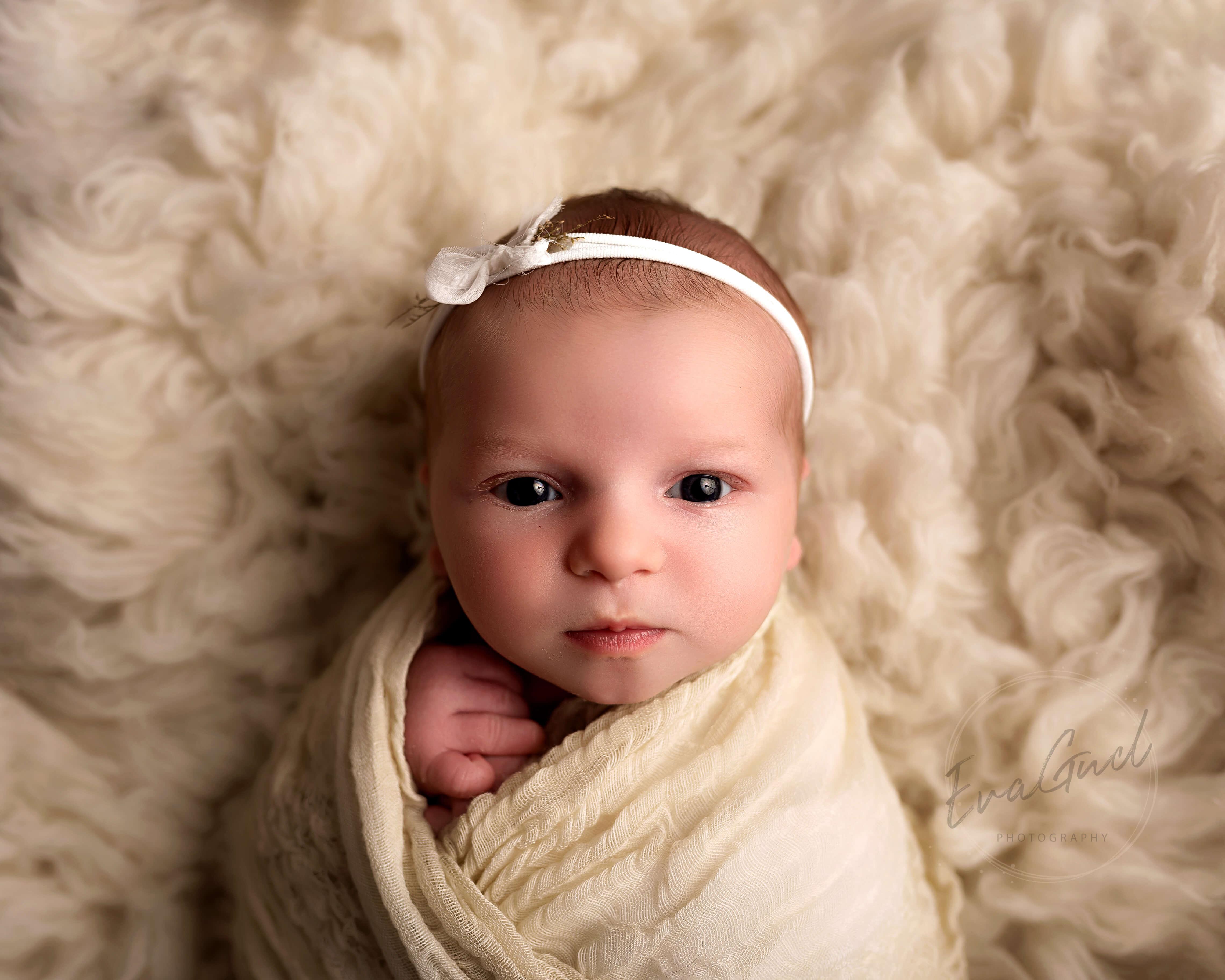 Essex newborn photographer EvaGud photography
